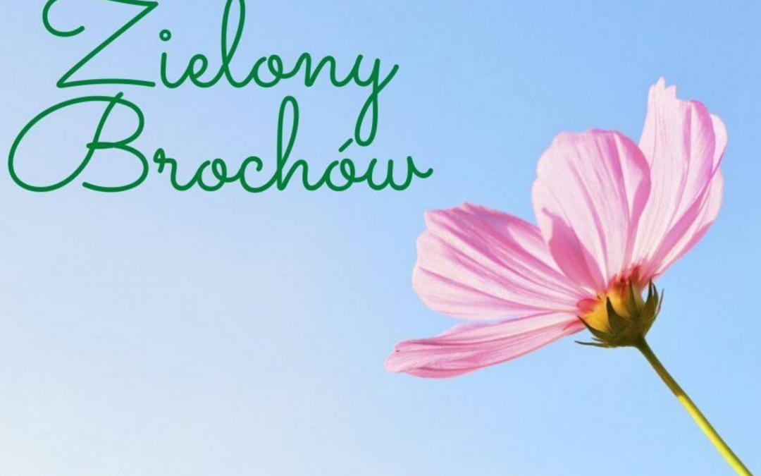 Zielony Brochów